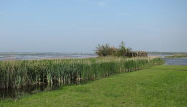 Polder Waterland en IJdoorn