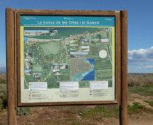 Vroege voorjaarsreis naar de Ebro delta in Spanje
